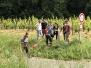 Formation Baliseurs  à Saumur