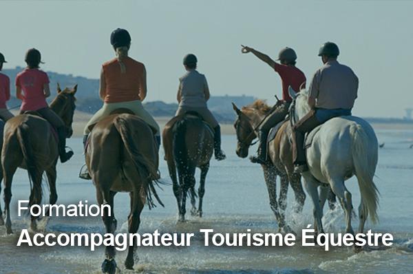 Formation Accompagnateur de tourisme équestre