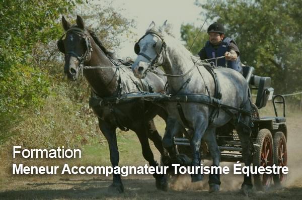 Formation Meneur Accompagnateur Tourisme Équestre