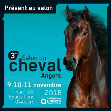 Explorez les Pays de la Loire, Sillonnez nos chemins….rendez vous avec le CRTE au Salon du cheval à Angers du 9 au 11 novembre 2018