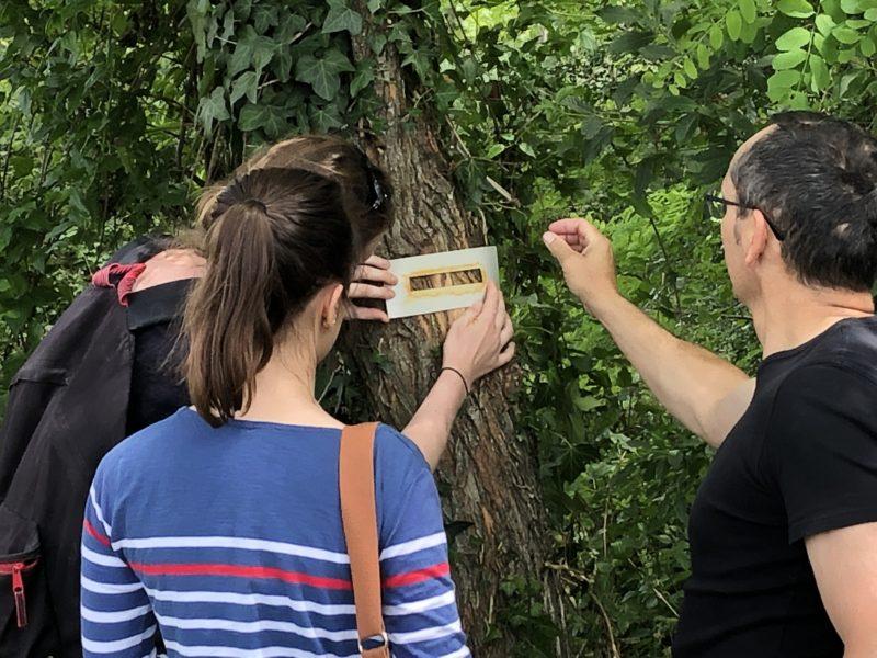 Formation Balisage à Saumur