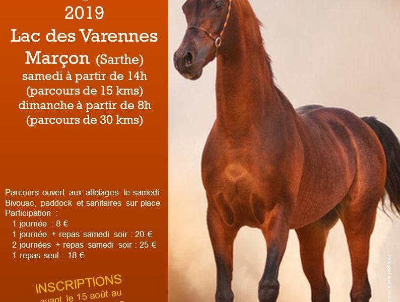 Rassemblement de cavaliers en Sarthe
