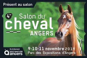 Rencontrons nous au Salon du Cheval d'Angers….les 9 -10 et 11 novembre