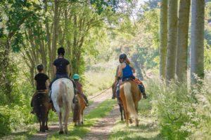 Randonnée de printemps @ Aurel'horse