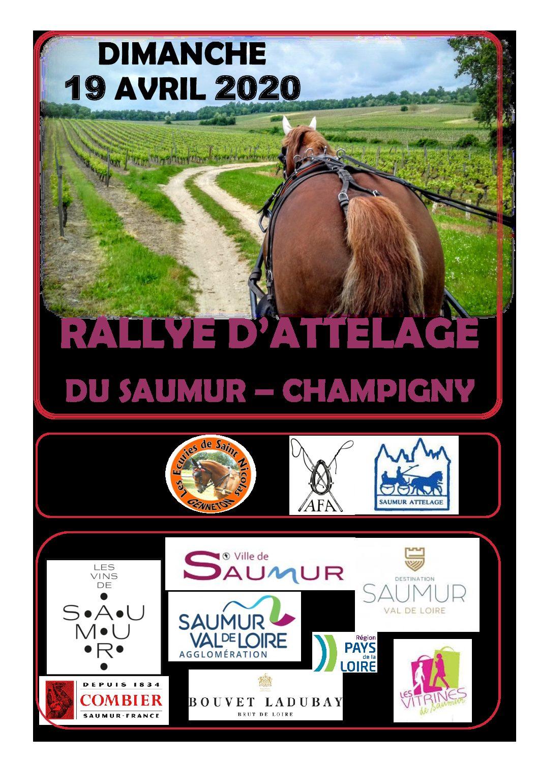 Journée de l'attelage….à Saumur
