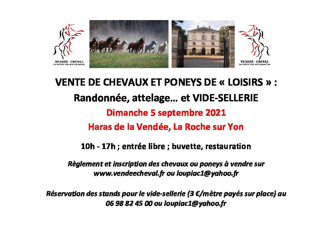 Vente de chevaux et poneys de loisirs